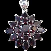 Sterling Silver Big Garnet Pendant