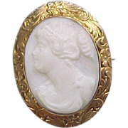 Vintage 10k Gold Carved Shell Cameo Pin / Brooch