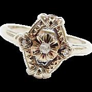 Edwardian 14k White Gold Floral .06 ctw Diamond Ring