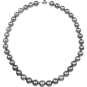 """15"""" Black Tahitian Pearl Strand Necklace ~ 14k White Gold"""