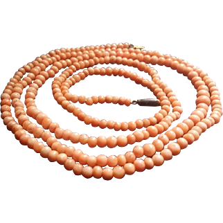"""34""""+ Strand of Natural Coral Beads"""