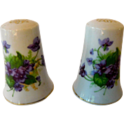 Lefton Hand Painted Salt and Pepper Shakers Violets
