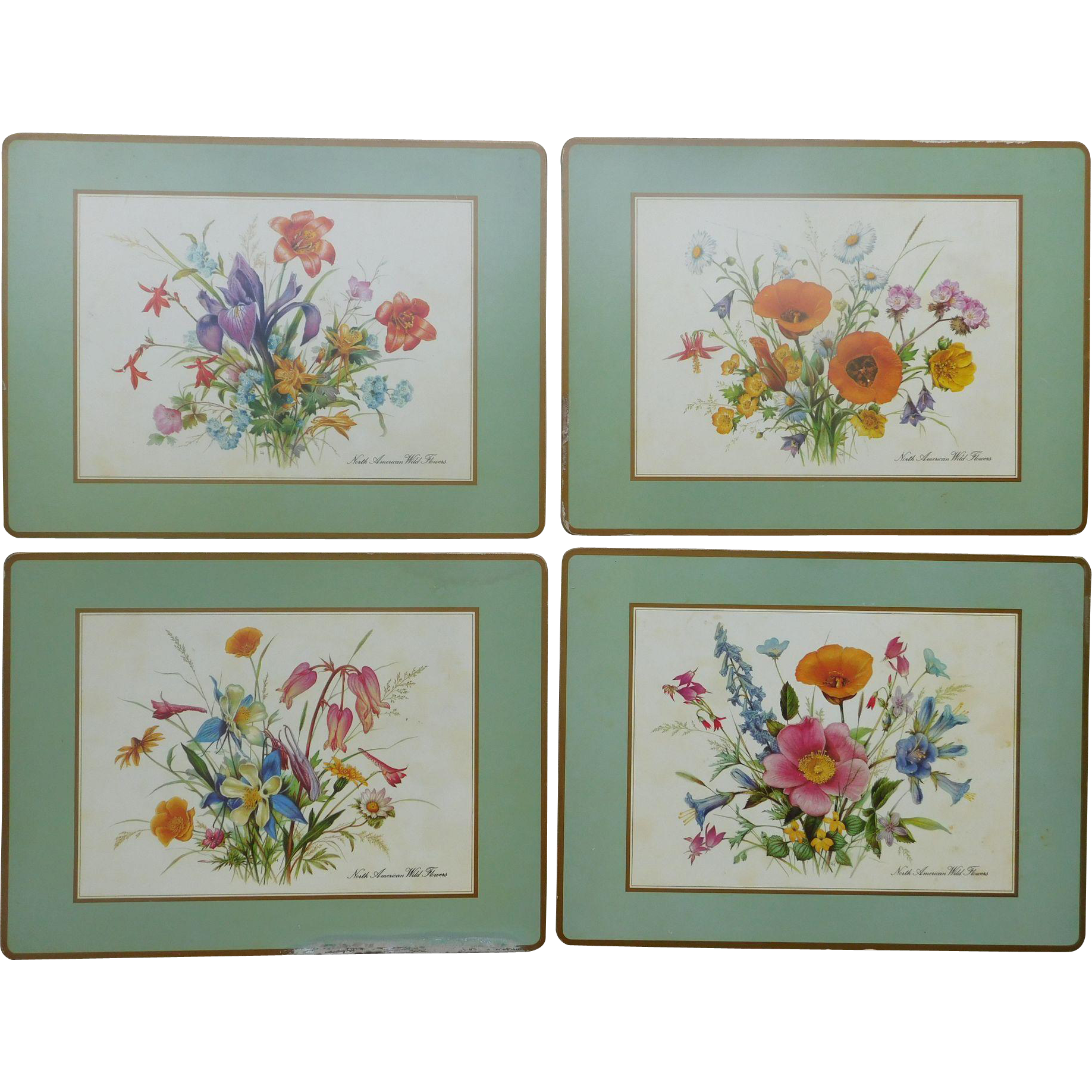 North American Wild Flowers Placemats With Cork Back From