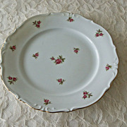 Bavaria West Germany Porcelain Salad Plate Rose Motif