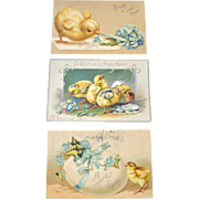 Postcards Three Easter Chicks Tuck and Germany