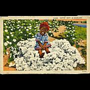 Postcard Black Americana Dixie Cotton Motel