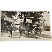 Postcard Pony and Cart RPPC