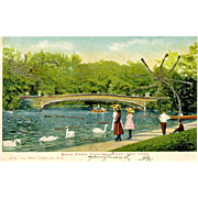 Postcard Swan Pond Central Park New York 1906 Glitter