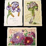 Postcard Iris with Gold Horseshoe Two German