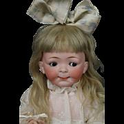 """Hertel, Schwab & Co. #164 Googly Toddler 14.5"""" Antique German Bisque Doll"""