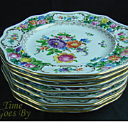 Set of 8 Hand Painted and Reticulated Dresden Flower DInner Plates - Thieme
