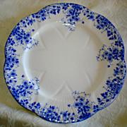 Shelley Dainty Blue Salad Plate