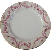 Royal Schwarzburg China RSC15 Luncheon Plate Pink Rose Garland Design c.1915