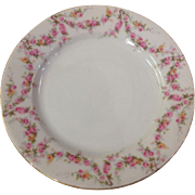 Royal Schwarzburg China RSC15 Salad Plate Pink Rose Garland Design c.1915