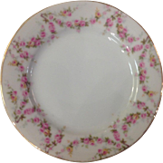 PAIR Schwarzburg China RSC15 Dessert Plates Pink Rose Garland Design c.1915
