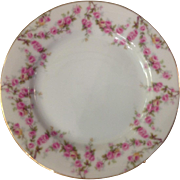 PAIR Royal Schwarzburg RSC15 Bread Butter Plates Pink Rose Garland Design c.1915
