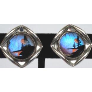 Vintage Screw Back Earrings Morpho Butterfly Wings