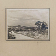 Original Pictorialist Landscape Photograph by Gilbert Coddington