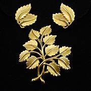 Crown Trifari Gold Tone Leaf Brooch and Earrings Set