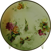 """ES Erdmann Schlegelmilch Hand Decorated 9"""" Decorative Plate"""