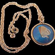 Vintage Blue Morpho Butterfly Wing Bezel Keepsake Pendant Locket on Chain