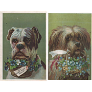 Pair Trade Cards Dogs With Basket Flowers
