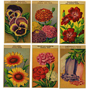 12 Gorgeous Lithograph French Flower Seed Labels #2