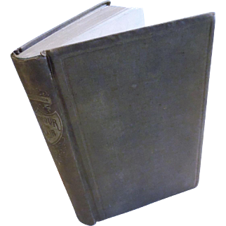 Seymour and Blair Their Lives & Services President Vice President Democrat Candidate 1868 History Reconstruction Victorian Antique Book