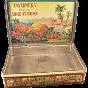 Wonderful English Advertising Store Display - Taverner's Bright Gums
