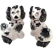 Charming Pair of English Victorian Staffordshire Dogs - Small Size
