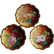 "Wonderful SET of THREE  9"" Limoges Plates Featuring French Tea Roses"