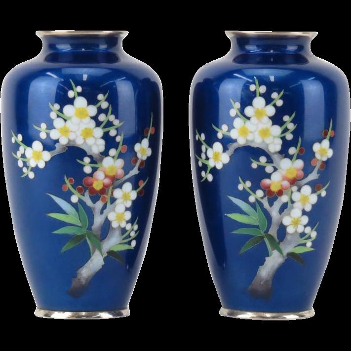 Pair of Antique Japanese Cloisonné Cobalt Blue Enamel Vases WithCherry Blossom and Foliage Motif.