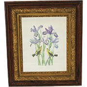 """19th Century Gilt And Natural Wood Frame With Jill Fogelsong Print """"Goldfinches With Iris"""""""