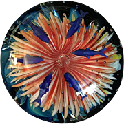 Huge Art Glass Sculpture/Paperweight,  Six Fish Floating Above Beautifully Colored Multi-Petalled Ocean Anemone
