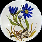 "CHRIS BUZZINI Glass Art One Of One Paperweight ""Tahoka Daisy"""