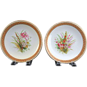 PAIR Of Exquisite Matching 1882 Royal Worcester Hand-Painted and Jeweled Porcelain Cabinet Plates With Gilt Trim