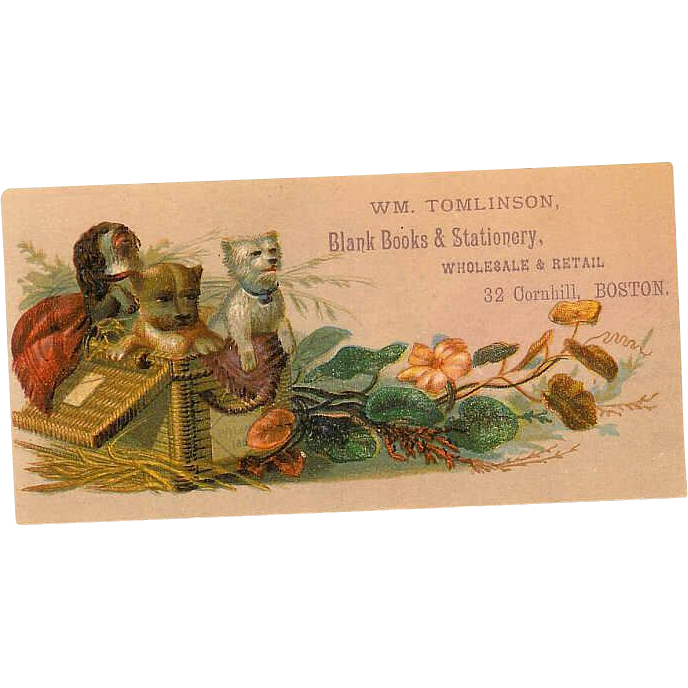 VICTORIAN Trade Card for Wm Tomlinson, Boston - Lots of Puppies!