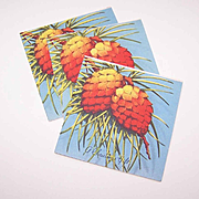 Trio C.1950 CHRISTMAS Gift Cards (Small) - Christmas Pinecones!