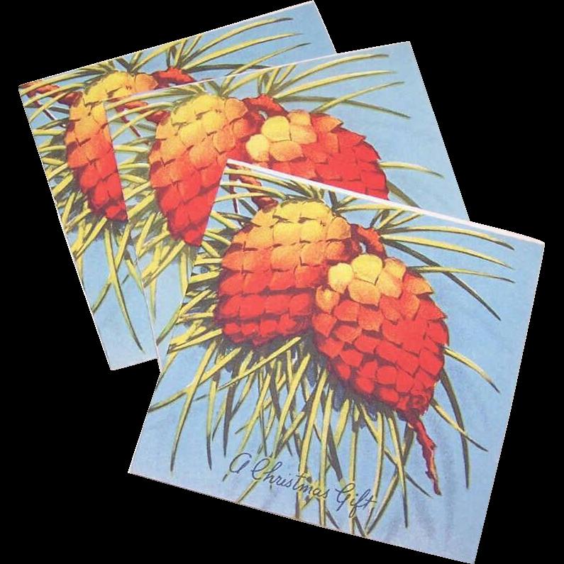 Trio C.1950 CHRISTMAS Gift Cards (Small) - Christmas Pinecones!
