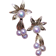 Vintage MIKIMOTO 14K Gold & Cultured Pearl Screwback Earrings!