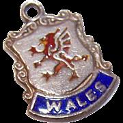 Vintage STERLING SILVER & Enamel Travel Shield Charm - Wales, England!
