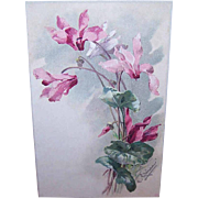 C.1960 CATHERINE KLEIN Postcard - Pale Pink Orchids!
