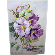 C.1960 CATHERINE KLEIN Postcard -Gorgeous Lavender & Purple Flowers!