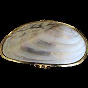 Vintage Sea Shell Clutch Bag