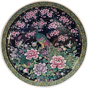 Vintage Chinese  Peacock Hand Painted Plate