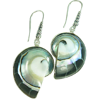 Nautilus Shell Sterling Silver Earrings