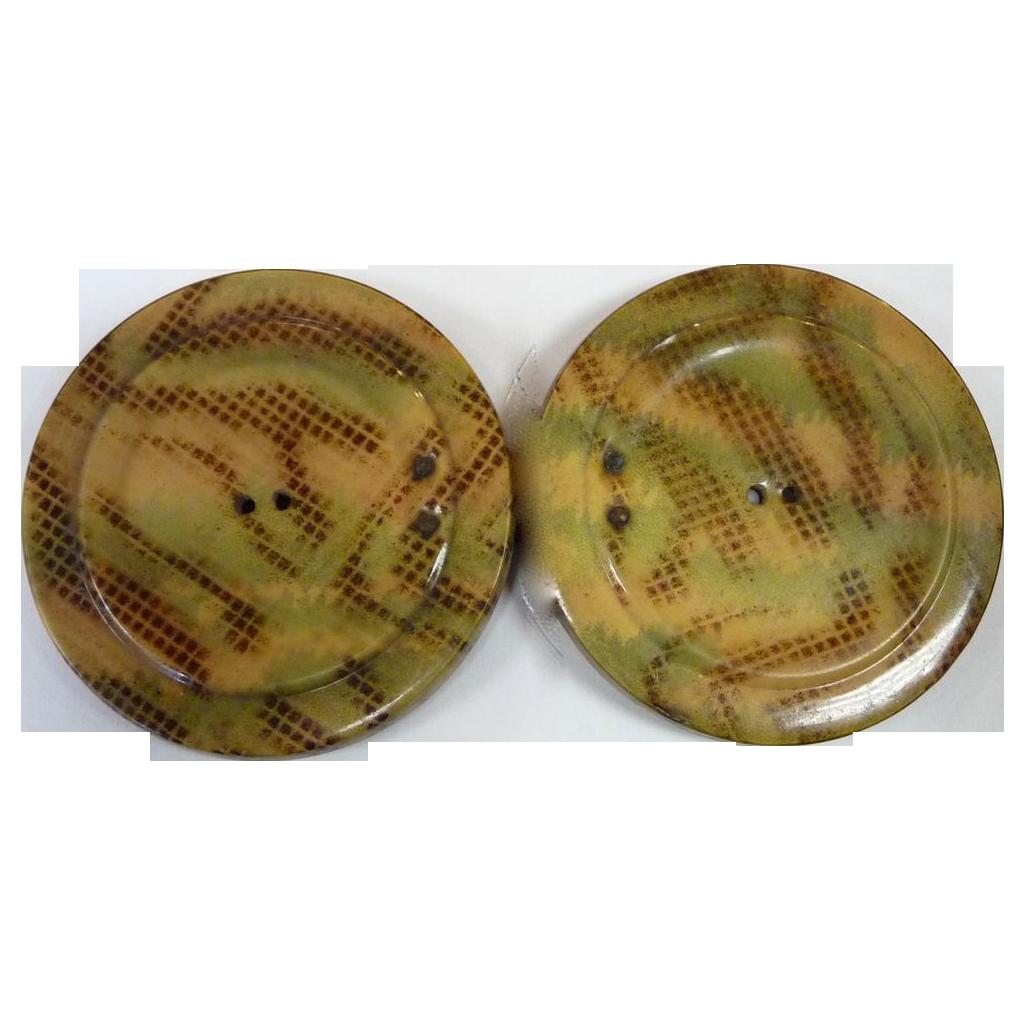 Art Deco 2 Piece Celluloid Button Buckle