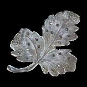 Italian 800 Silver & Marcasite Leaf Pin