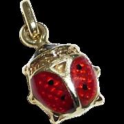 14k Realistic Enameled Ladybug Charm
