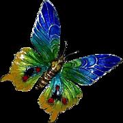 935 Sterling & Vitreous Enamel Colorful Butterfly Pin